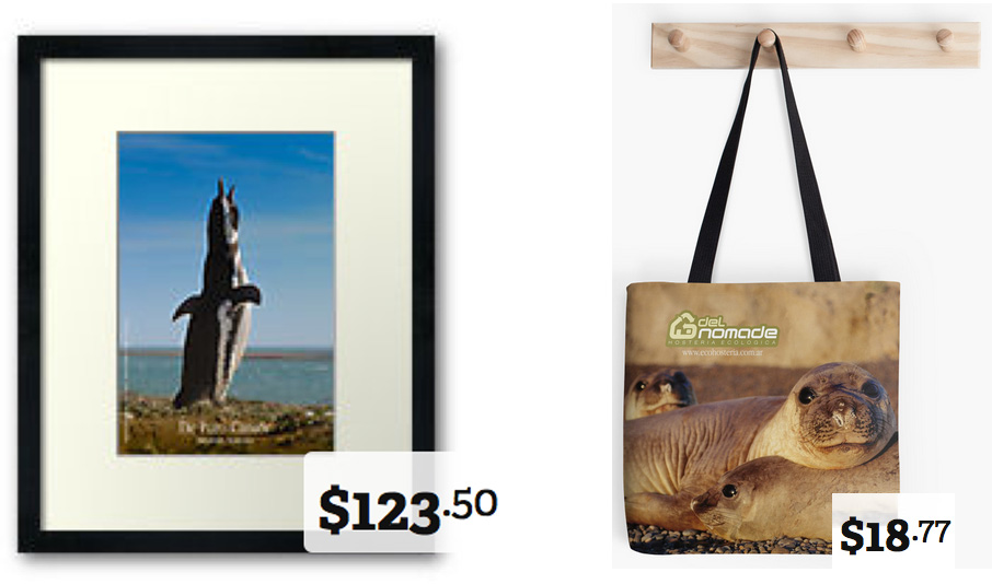 buy a gift from Valdes Peninsula